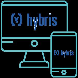 hybrisimgpage